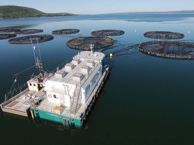 aquaculture-net-cleaning-high=pressure-water